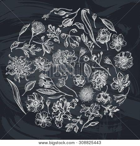 Round Floral Design With Chalk Japanese Chrysanthemum, Blackberry Lily, Eucalyptus Flower, Anemone,