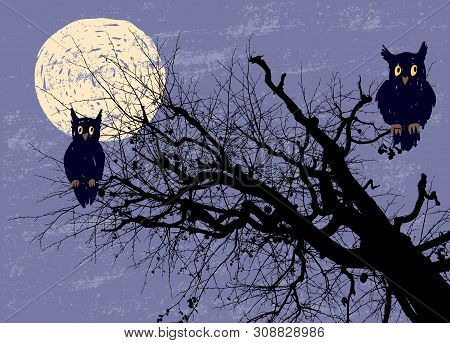 Vector Image Of The Owls Sitting On The Tree Branches In The Halloween Moonlit Night