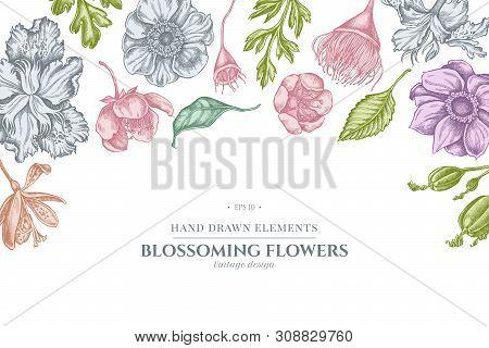 Floral Design With Pastel Japanese Chrysanthemum, Blackberry Lily, Eucalyptus Flower, Anemone, Iris