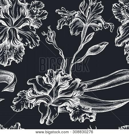 Seamless Pattern With Hand Drawn Chalk Iris Japonica Stock Illustration
