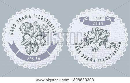 Monochrome Labes With Iris Japonica Stock Illustration