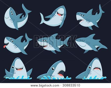 Ocean Shark Mascot. Scary Sharks Animals, Smiling Jaws And Swimming Shark. Underwater Marine Monster