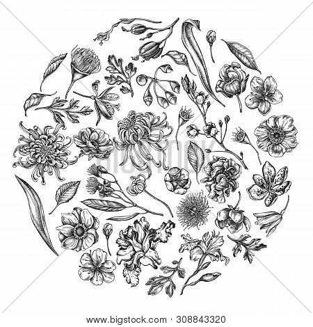 Round Floral Design With Black And White Japanese Chrysanthemum, Blackberry Lily, Eucalyptus Flower,