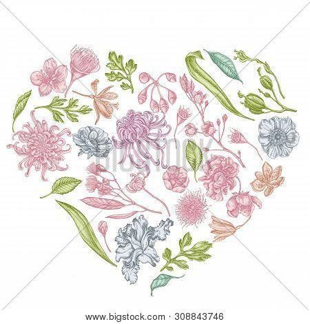 Heart Floral Design With Pastel Japanese Chrysanthemum, Blackberry Lily, Eucalyptus Flower, Anemone,