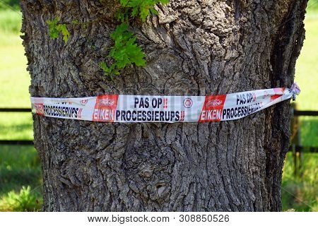Muiderberg, The Netherland - June 29, 2019:  Dutch Attention Sign Warning For Oak Processionary.