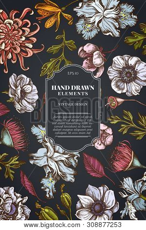 Card Design On Dark Background With Japanese Chrysanthemum, Blackberry Lily, Eucalyptus Flower, Anem