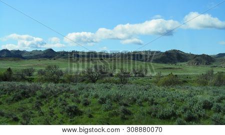 vast open prairie grass field with pine trees on a hill in the background under a blue and cloudy sky in big sky country poster