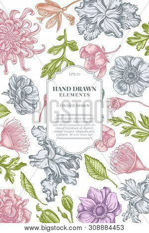 Card Design With Pastel Japanese Chrysanthemum, Blackberry Lily, Eucalyptus Flower, Anemone, Iris Ja