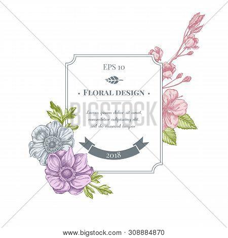 Badge Design With Pastel Anemone, Iris Japonica, Sakura Stock Illustration
