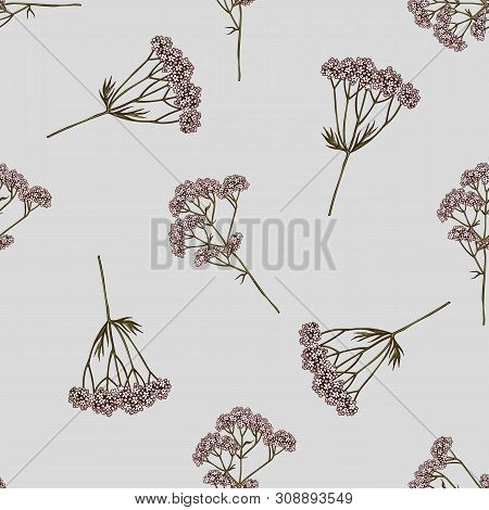 Seamless Pattern With Hand Drawn Colored Valerian Stock Illustration