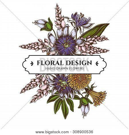 Floral Bouquet Design With Colored Dandelion, Ginger, Passion Flower Stock Illustration