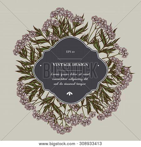 Badge Over Design With Valerian Stock Illustration