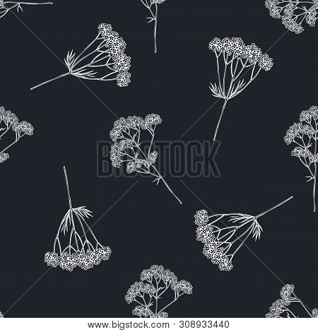 Seamless Pattern With Hand Drawn Chalk Valerian Stock Illustration