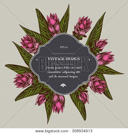 Badge Over Design With Turmeric Stock Illustration