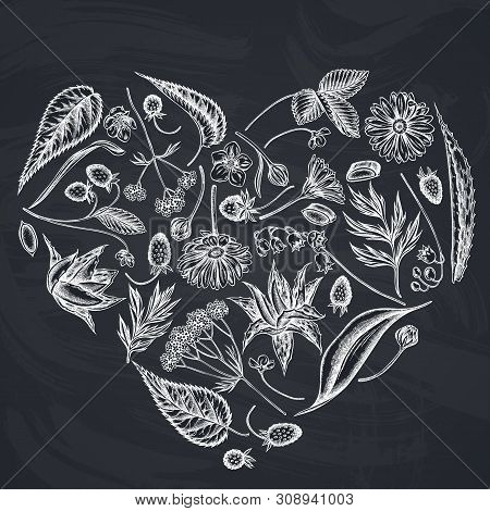 Heart Floral Design With Chalk Aloe, Calendula, Lily Of The Valley, Nettle, Strawberry, Valerian Sto