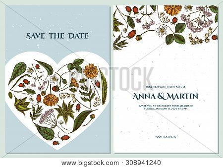 Wedding Invitation Card With Colored Aloe, Calendula, Lily Of The Valley, Nettle, Strawberry, Valeri
