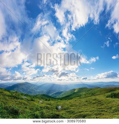 Amazing Summer Landscape At Sunset. Grassy Hills Rolling Down In To The Valley. Mountain Range In Th