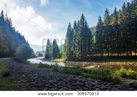 Mountain River Winding Through Forest. Beautiful Nature Scenery In Autumn. Spruce Trees By The Shore