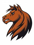 Brown stallion head for mascot or equestrian sports design poster