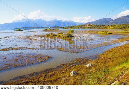 Beautiful Sunny Wetland Landscape. Montenegro, Tivat. View Of Tivat Salina, Nature Reserve