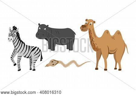Set 3 Of Cute Animals Collection: Zebra, Hippo, Camel, Cobra. African Animals