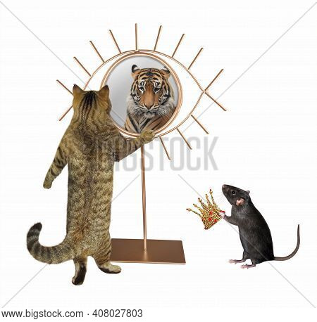 A Beige Cat Stares His Reflection In A Mirror. He Sees A Tiger There. A Rat Gives A Crown To Him. Wh