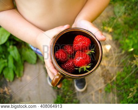 Strawberry Cap In Hands. Holding Fresh Strawberry In Cup With Child Hands. Handful Of Strawberries I