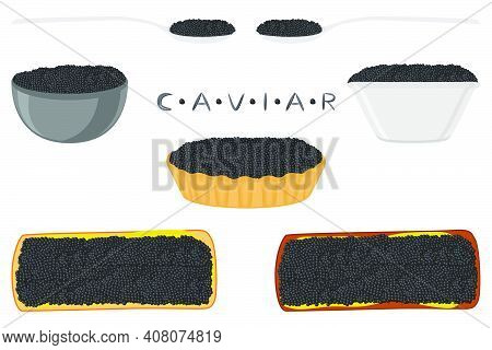 Illustration On Theme Big Set Various Types Fish Caviar, Bread Different Size. Bread Consisting Of T