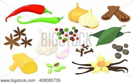 Colorful Spicy Spices And Vegetables Flat Item Set. Cartoon Fresh Garlic, White Onion, Hot Chili, Al