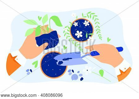 Hands Of Florist Taking Care About Plants In Pots, Holding Houseplant And Digging Soil With Shovel.