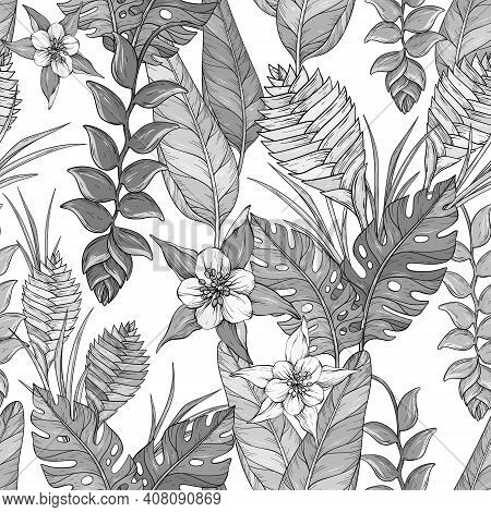 Vector Seamless Black And Whitefloral Pattern With Hand Drawn Jungle Leaves And Exotic Flowers. Heli