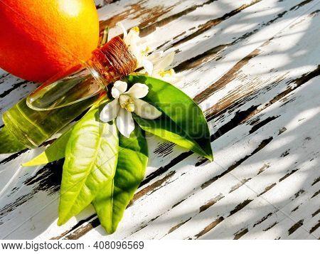 Neroli Orange Blossom Essential Oil In Bottle. Fresh White Flowers, Green Leaf & Neroli Essential Oi