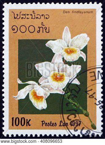Laos - Circa 1997: A Stamp Printed In Laos Shows Findlays Dendrobium, Dendrobium Findlayanum, Is A S