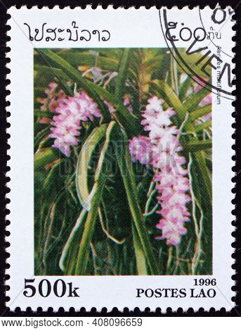 Laos - Circa 1996: A Stamp Printed In Laos Shows Multi-flowered Aerides, Aerides Multiflorum, Is A S