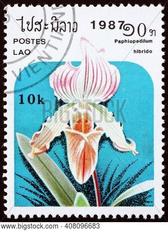 Laos - Circa 1987: A Stamp Printed In Laos Shows The Lady Slipper Orchid, Paphiopedilum Hibrid, Is A