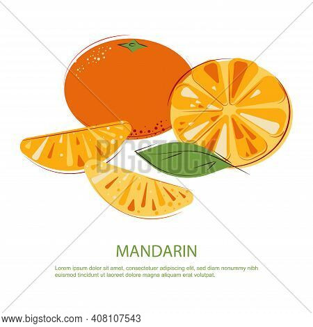 Sunny Juicy Mandarins With Green Leafs. Composition Of Whole And Cut Fruits. Slices And Whole Mandar