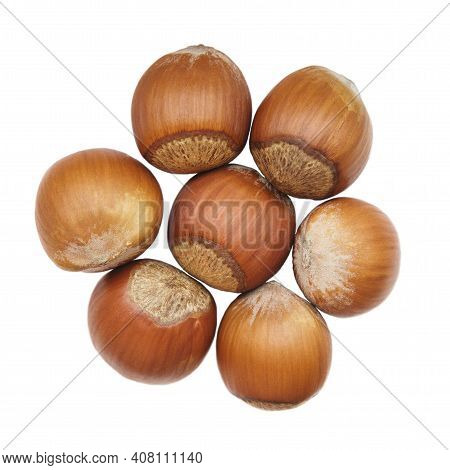 Handful Of Hazelnuts Isolated On White Background. Hazelnuts Laid Out In The Shape Of A Flower. Food