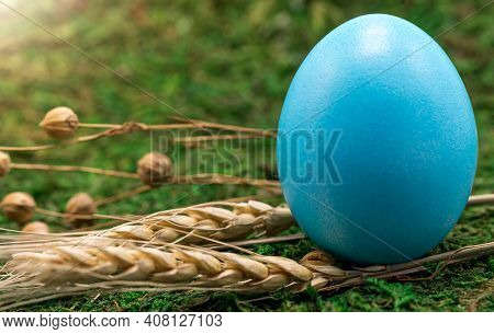 Close-up Of A Chicken Egg Painted Blue On Green Grass On A Sunny Spring Day. Free Space. The Concept