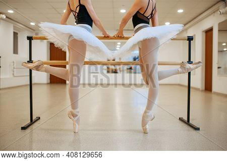 Elegant ballerinas, exercise at the barre in class
