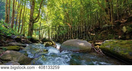 Mountain River Runs Through Forest. Summer Nature Scenery On A Sunny Day. Rapid Water Flows Among Th