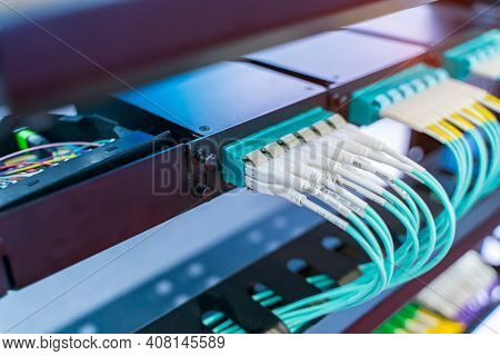 green optical patch cords inserted into the green optical ports, professional external device for television