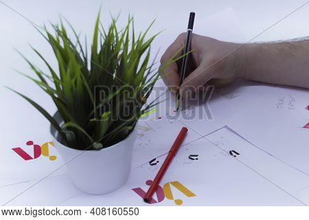 Graphic Designer Draws A Logo In A Creative Studio On A Light Background With A Flower In A Pot And