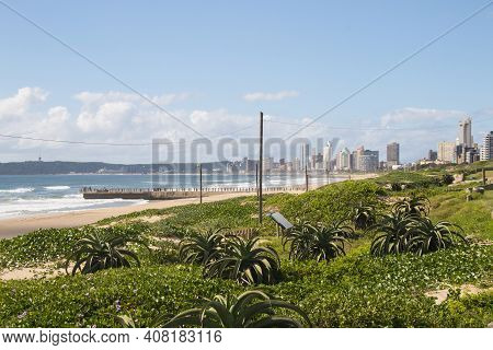 Dune Covered With Vegetation With Pier And Buildings In Background