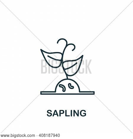 Sapling Icon. Simple Element From Global Warming Collection. Creative Sapling Icon For Web Design, T