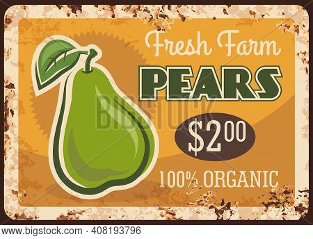 Pear Rusty Metal Plate, Vector Vintage Rust Tin Sign With Ripe Garden Fruit With Leaf. Pear Farm Mar