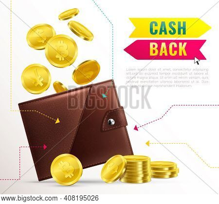 Colored Realistic Wallet Poster With Cash Back Headline And Brown Leather Wallet With Cash Vector Il