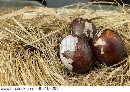 Colorful Easter Eggs In A Nest On A Wooden Table. Easter Concepts