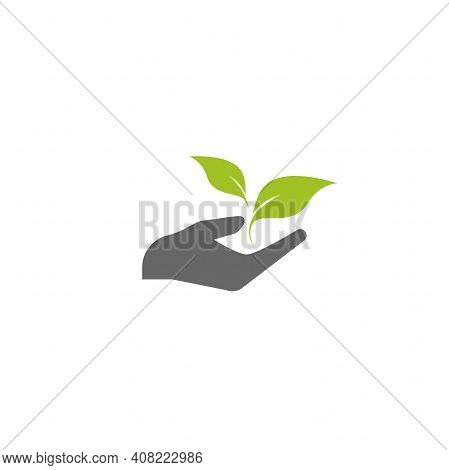 Sprout In A Hand. Hand Holding Sprig With Green Leaves. Growth, Start Up. Idea Developing. Vector Il