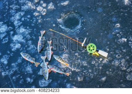 Winter Fishing. River Perches, Fishing Rod For Winter Fishing And Hole In The Ice