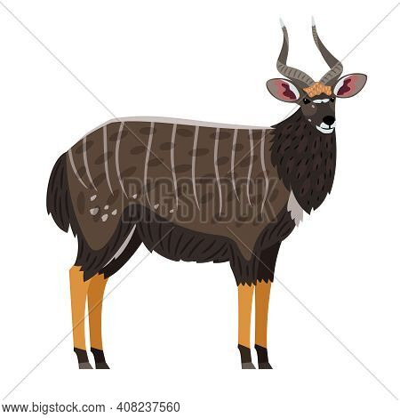 African Antelope. Cartoon Gazelle With Horns On Head, Exotic Character Of Zoo, Symbol Of Hunting Tro